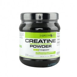 Natroid Creatine 400g